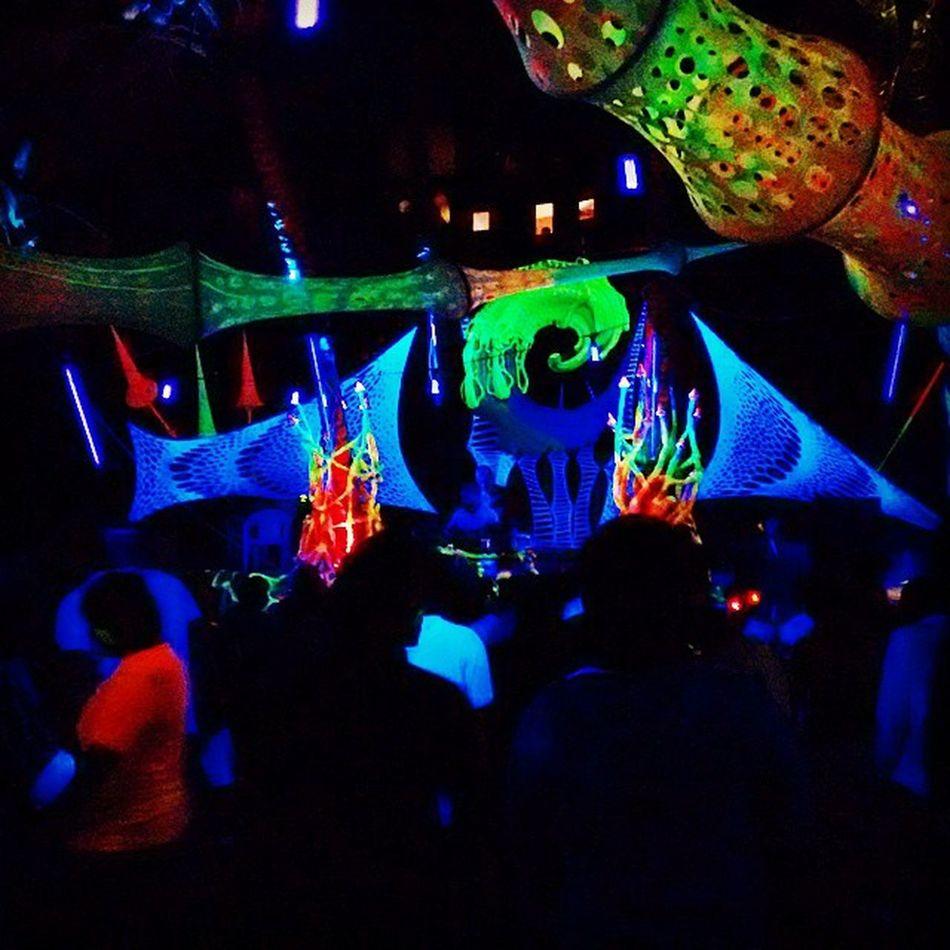 Rave Party Neon Glow Goa Curlies Shivavalley Charsi People High Nightlife Goaneversleeps Fuckingcrazy