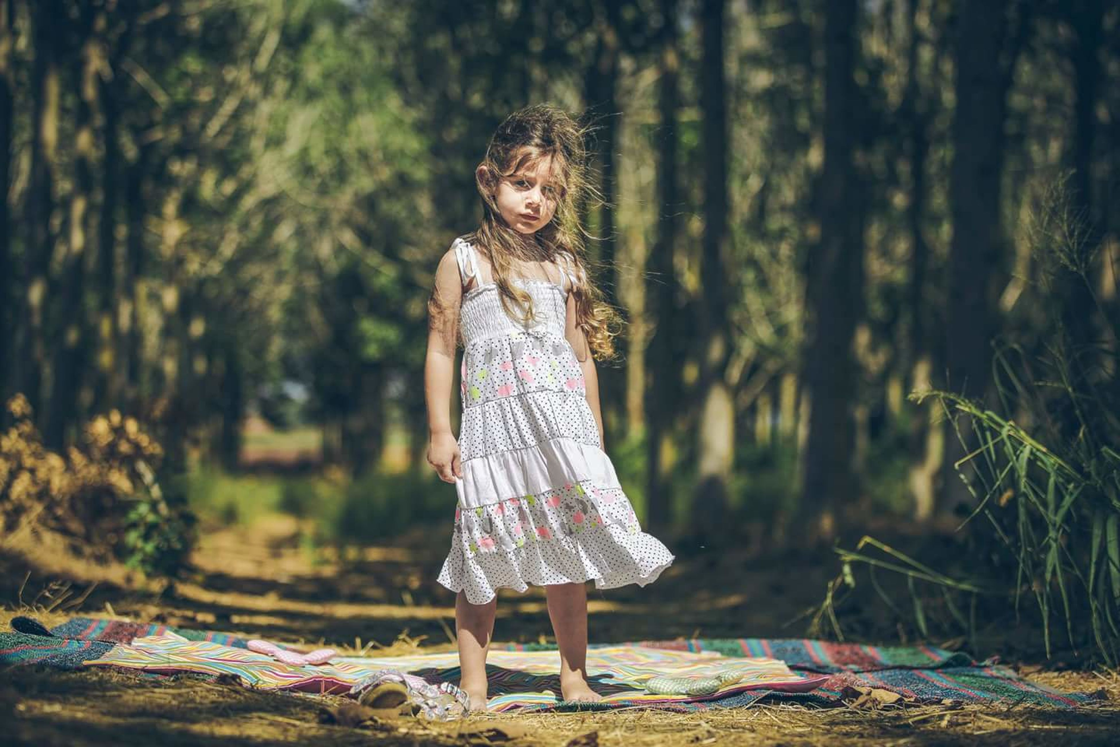 lifestyles, leisure activity, forest, standing, casual clothing, full length, person, tree, young adult, woodland, young women, long hair, outdoors, day, focus on foreground, nature, non-urban scene