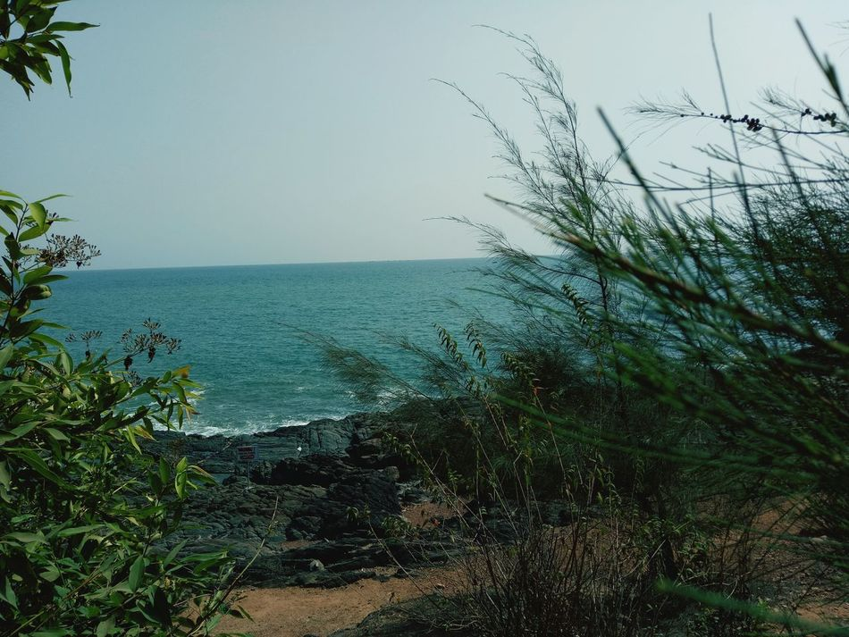 Nature Sea Water Outdoors Day Beauty In Nature Scenics Horizon Over Water No People Sky Beach Tree Bird Togetherness Vacations Travelling Photography Beachtime Leisure Activity Travel Destinations Beauty In Nature