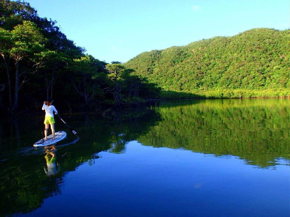Stand Up Paddling River Sup Iriomote Island