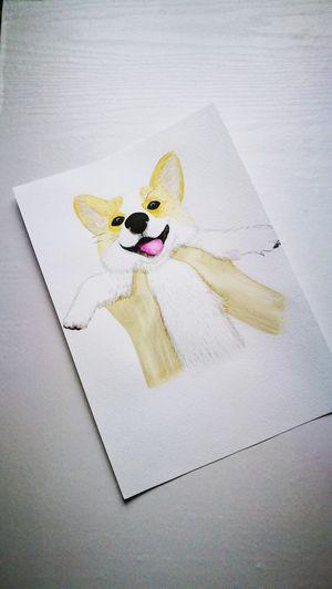 Рисую 😊 Dog Dogs Dog Love Paint Watercolor Watercolor Painting Puppy Я рисую люблю рисовать учусь рисовать рисуюкаждыйдень рисунки акварель иллюстрация HuaweiP9 Huaweiphotography Huawei P9 Leica HuaweiP9Photography Huawei Photography Huawei