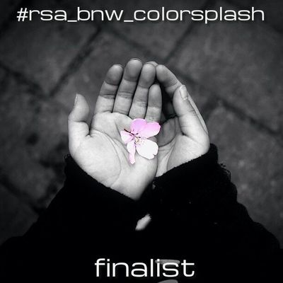▪rsa_bnw▫proudly presents the 5 finalists of the #rsa_bnw_colorsplash challenge! ▪thank you for your support! it was a hard decision - so many awesome entries! ▫ pls vote for your favourite shot(s). vote closes on monday, april 8th 2013, 1 pm (CET). ▪you Black_white Rsa_bnw Noir Bnw_life Blackandwhite Blackandwhiteonly Black And White Ig_snapshot Bw_lover Bestshooter Bw_love Eclecticphotos Bnw_society Blackandwhitephoto Bw_lovers Eclectic_bnw Blackandwhitephotography Bnw_demand Insta_pick_bw Rsa_bnw_colorsplash Bw_crew Noirlovers Ic_bw Royalsnappingartists Most_deserving_bw