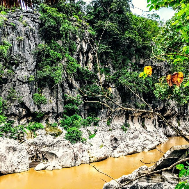 Beautiful rock formation Water Tree Rock - Object Scenics Rock Formation Tranquil Scene Cliff Tranquility TravelPhilippines EyeEm Nature Lover Eyeem Philippines Non-urban Scene Nature Growth Eroded Stream Waterfall Rocky Mountains Day Geology Multi Colored Flowing