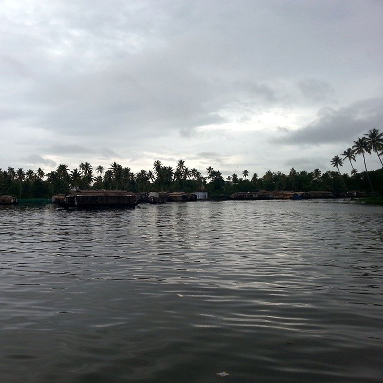 Kuttanad_lake Alappuzha Kerala