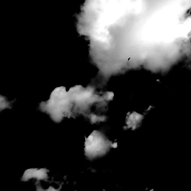 Fly away! NEM Clouds Clouds Sky And Clouds Blackandwhite Black And White Black & White Black Series The Great Outdoors - 2015 EyeEm Awards