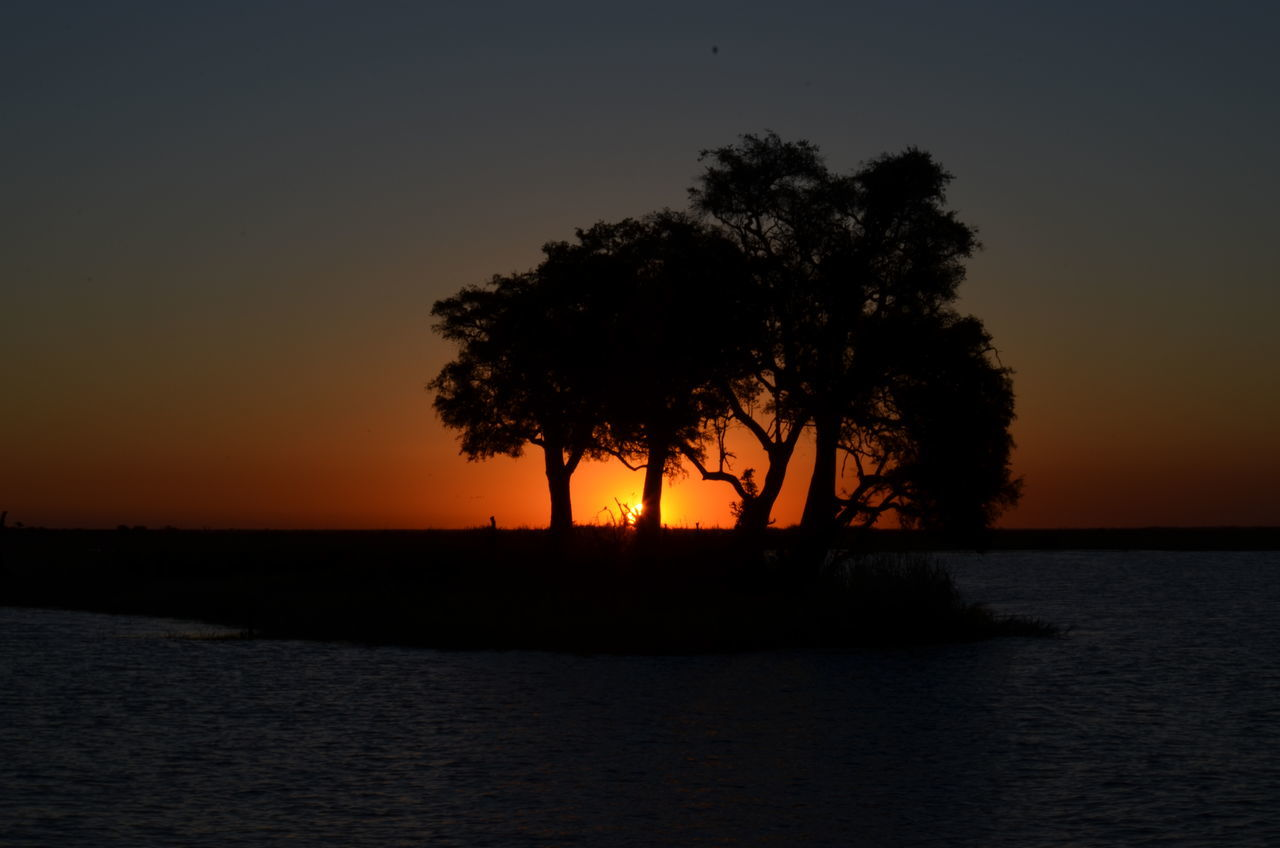 sunset, silhouette, orange color, beauty in nature, nature, scenics, sea, tree, water, tranquil scene, tranquility, waterfront, sky, idyllic, no people, sun, clear sky, outdoors