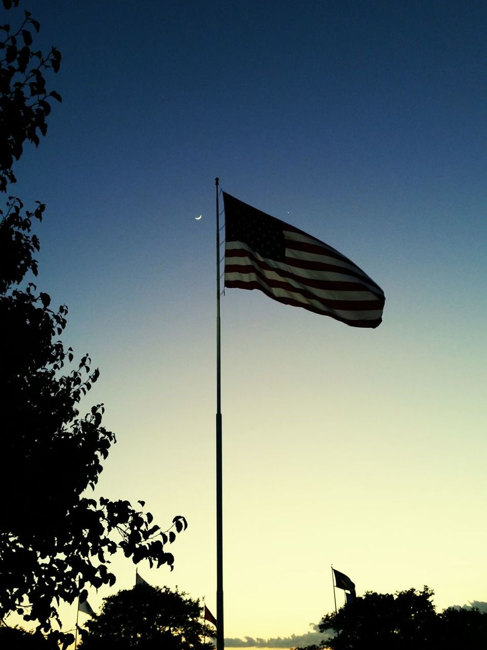 Beautiful stock photos of veteran's day, American Culture, Clear Sky, Day, Flag Pole