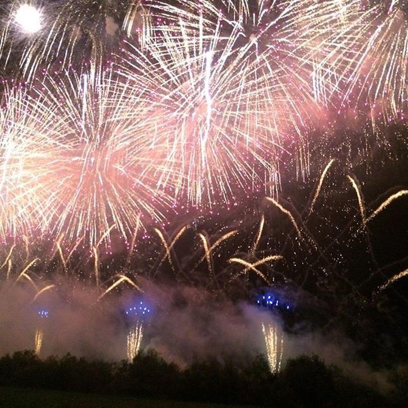 山形県の赤川花火大会❗ 花火を見て感動したの初めて❗ 最高の夏の思い出になりました。 赤川花火大会 山形県 花火大会 感動
