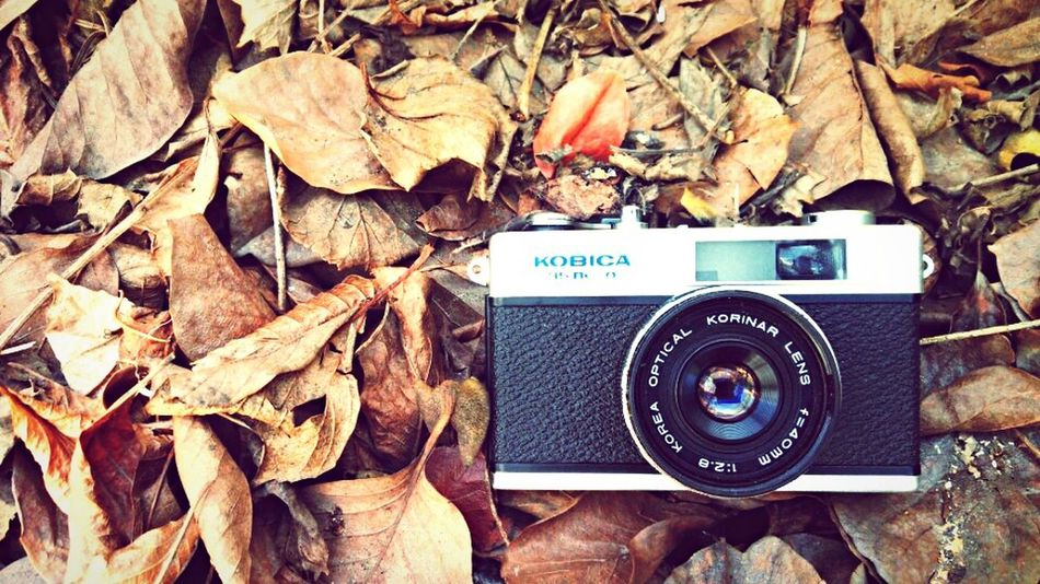 Filmcamera Kobica35 Enjoying Life Camera PhonePhotography Emotions Traverl