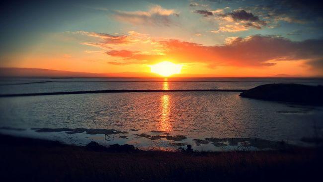 Coyotehills  Sunset Trailing Bay Area Newark