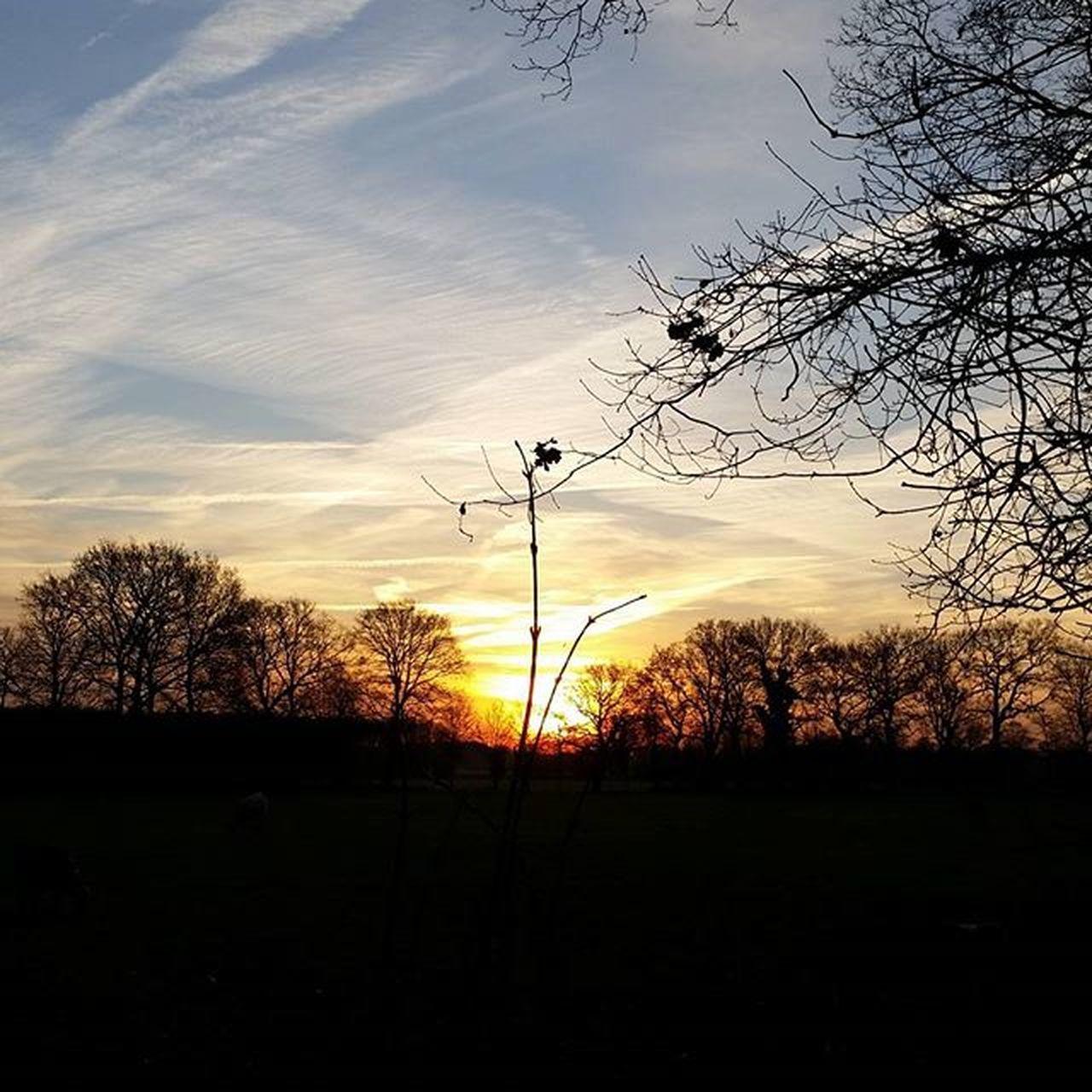 Sunrise Zonsopgang Iglimburg Hollandseluchten Natuurfotografie Ig_europe Sky_sultans Ic_trees Sky_captures