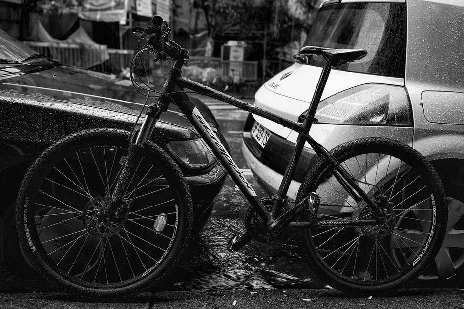 Ladies and gentelmen! This is Simon my Bike