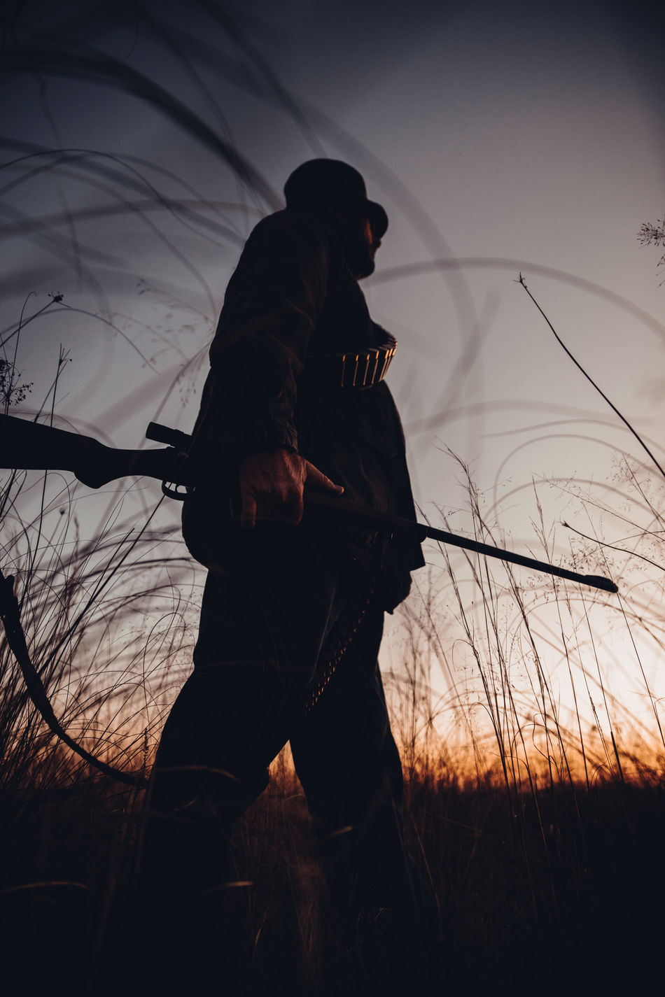 Hunter with cartridge observing grassland with shotgun in sunrise Agriculture Aiming Field Hobby Hunter Hunting Lifestyle Long Grass Man Morning Nature Observe People Permit Shooting Shotgun Silhouette Skill  Sniper Sunrise Weapon Western Wild Animals Wilderness Wildlife