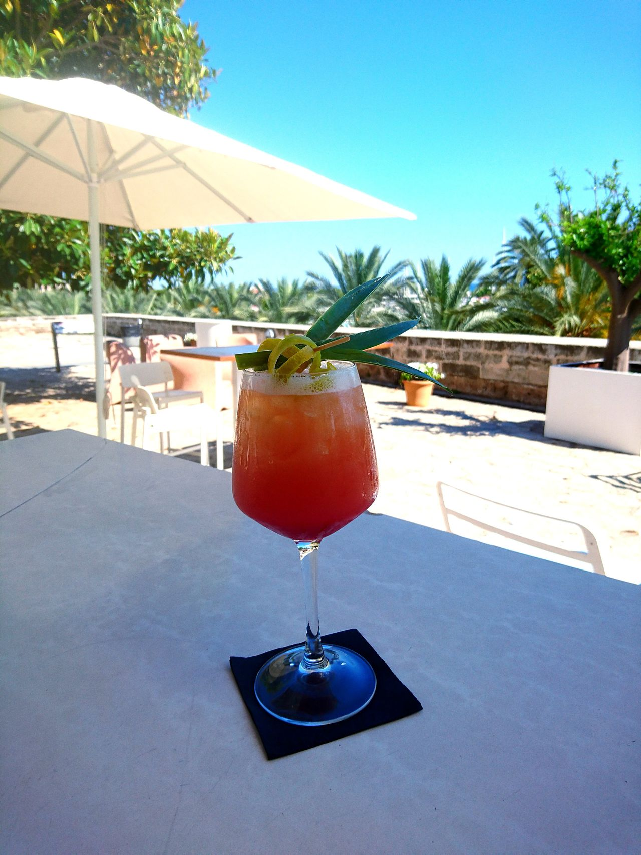 Cocktails🍹 Cocktail Luxury Swimming Pool Luxury Hotel Tourist Resort Architecture Hotel Water Palm Tree Wealth Table No People Patio Vacations Day Outdoors Tree Nature Palm Palm Cockteil