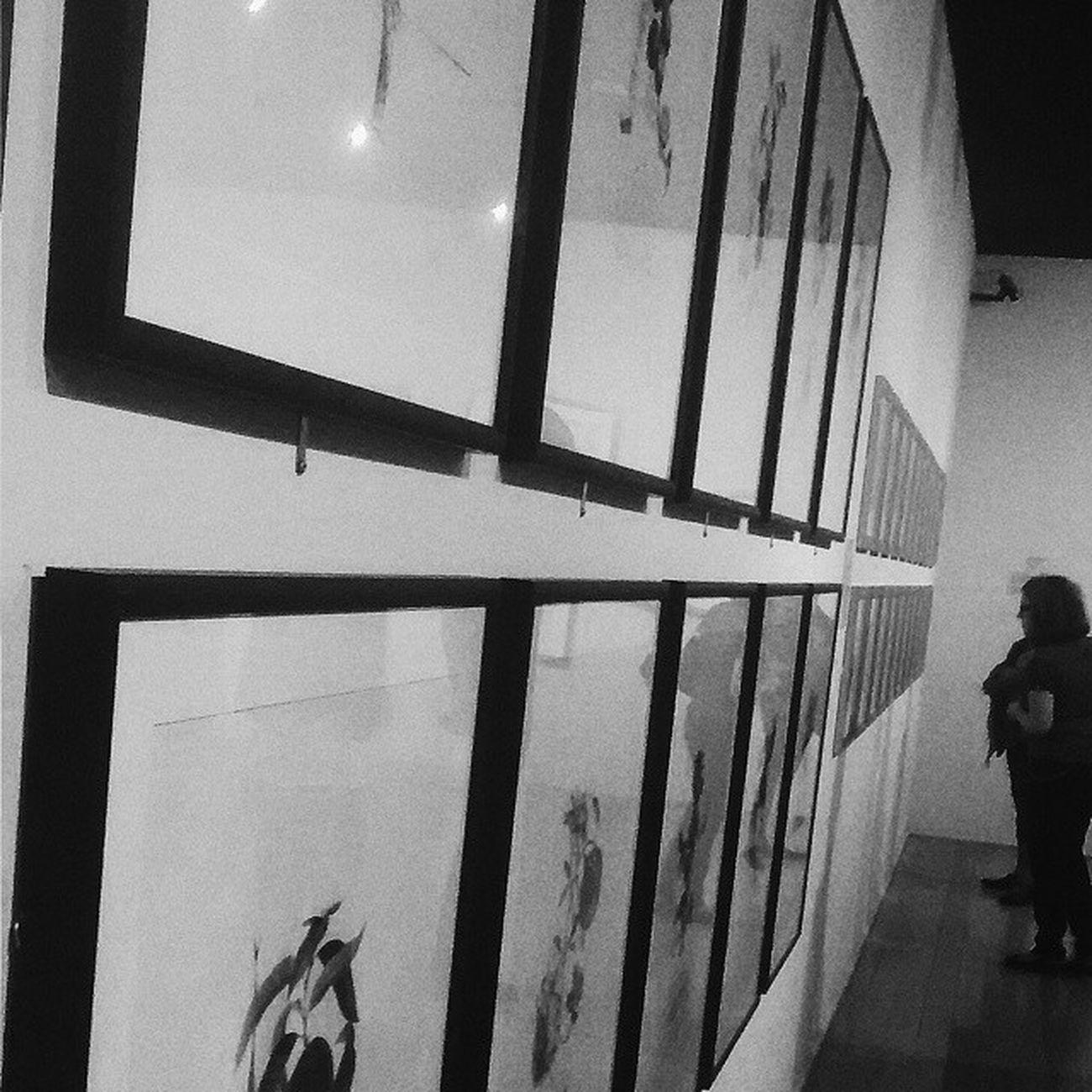 Salvador Dalí! Salvadordali