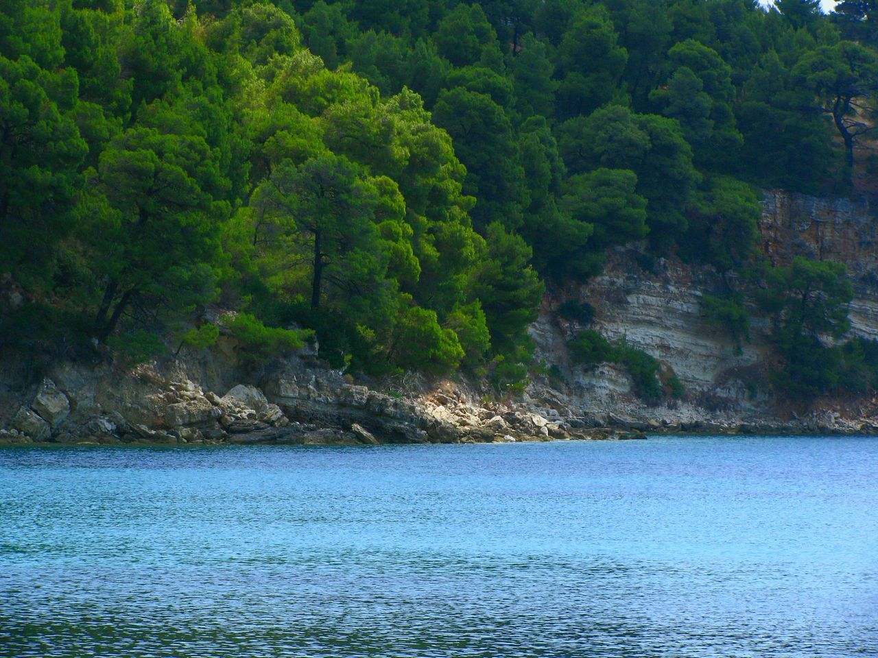 Pine Trees Nature Sea Cliff Rock Water Tree Scenics Beauty In Nature Tranquility Outdoors Tranquil Scene Green Color Landscape Landscapes Crystal Clear Waters Trees And Sea Greek Islands Blue Sea Cliff And Sea On A Boat