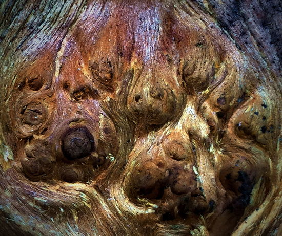 Backgrounds Bark Brown Close-up Day Detail Deterioration From My Point Of View Full Frame Ilusion Image Macro Natural Pattern Nature No People Old Outdoors Part Of Rough Textured  Tree Trunk Wood Wood - Material Wood Art Wooden