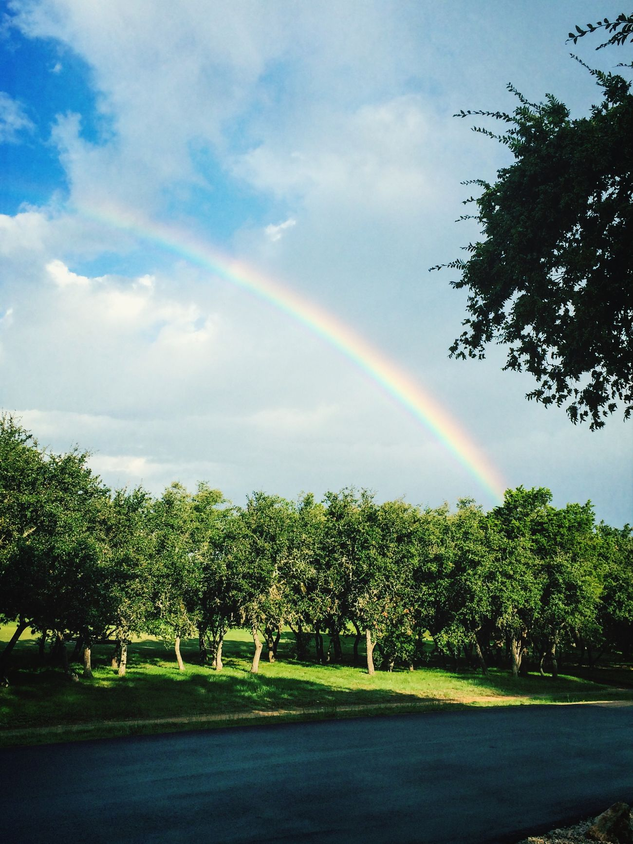 I spotted a beautful rainbow this morning Rainbow Beautful Bright Check This Out
