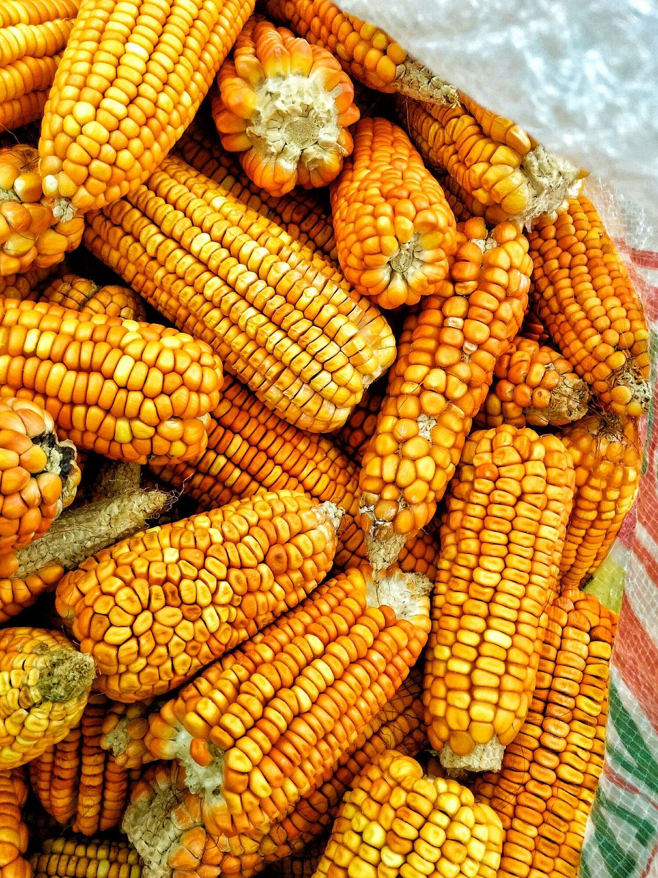 Korn Choclo Amarillo Maiz Goodlooking Foodphotography