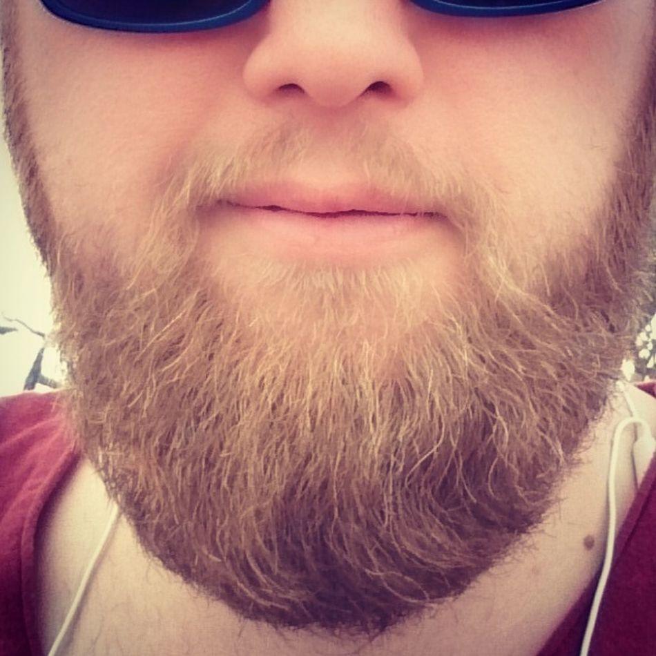 Nice work today at barber shop! Thank you for that refresh^^ Bearded Beardedmen Beardbrandpotd Urbanbeardsman Beardbrand