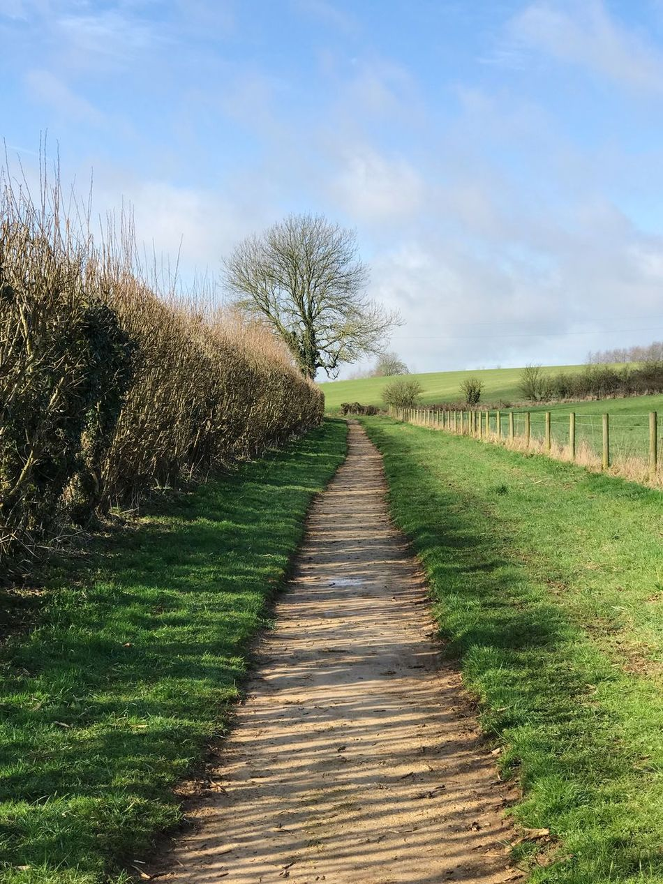 The Way Forward Nature Sky No People Outdoors Day Grass Landscape Tranquility Tree Scenics Beauty In Nature Countryside Countryside Landscape Lane Walk Cotswalds England