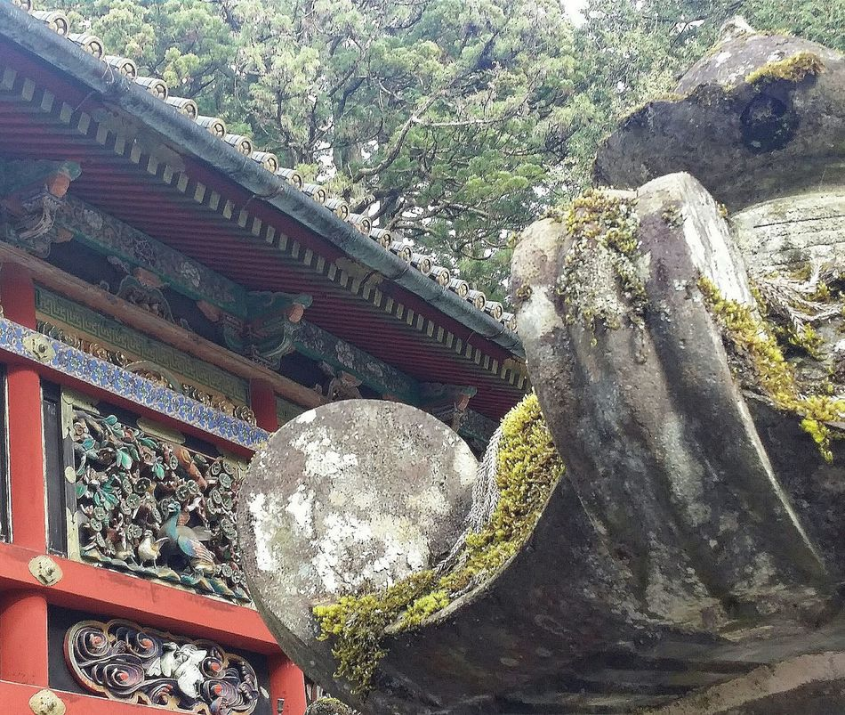 The Tozai Kairo is a semi-enclosed corridor constructed around Toshogu Shrine.. There are 25 panels carved with Nature Scenes. ... These are very detailed scenes carved by Hidari Jingoro and painted by Kano TanyuStone Lanterns with Moss Kairo Panels