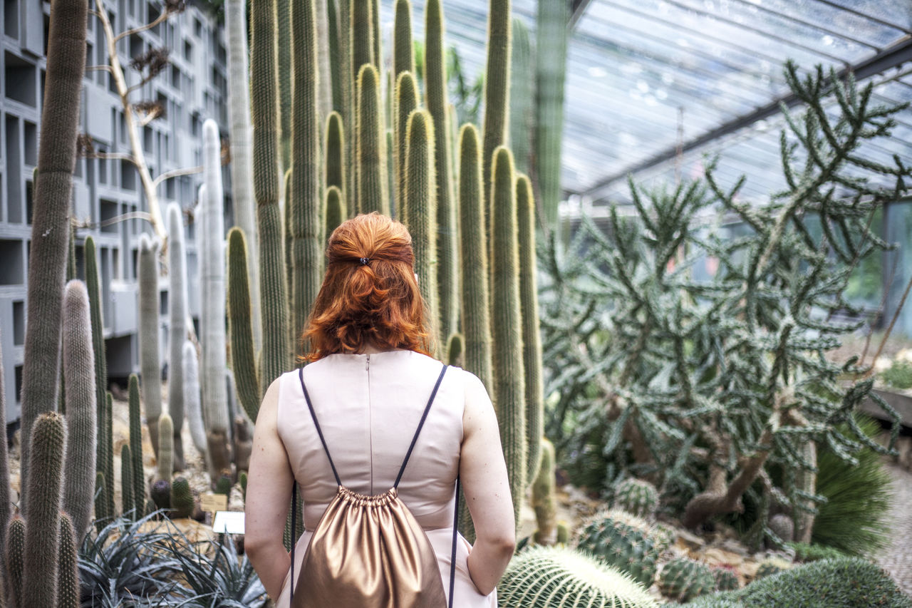 Cactus Cactus Garden Casual Clothing Copper Backpack Day Focus On Foreground Girl Green Color Growth Leisure Activity Lifestyles Looking At Things Plant Quiet Moments Quiet Places Red Hair Relaxed Woman