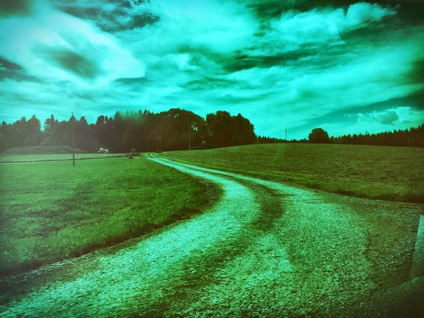 Tranquil Scene Landscape Tranquility Grass Green Color Scenics Tree Cloud - Sky Blue Beauty In Nature Sky Field Nature Non-urban Scene Rural Scene The Way Forward Outdoors Day Cloudy Grassy