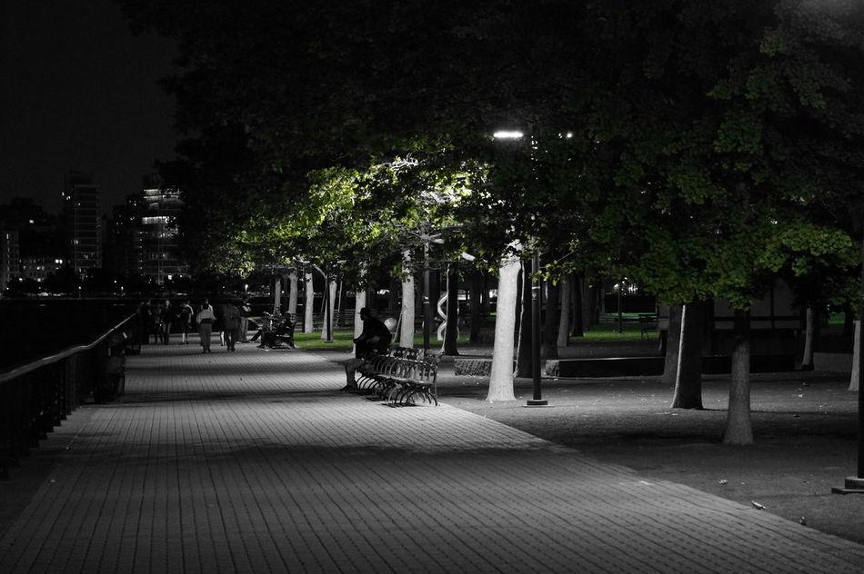 Parks Taking Photos Black&white&color
