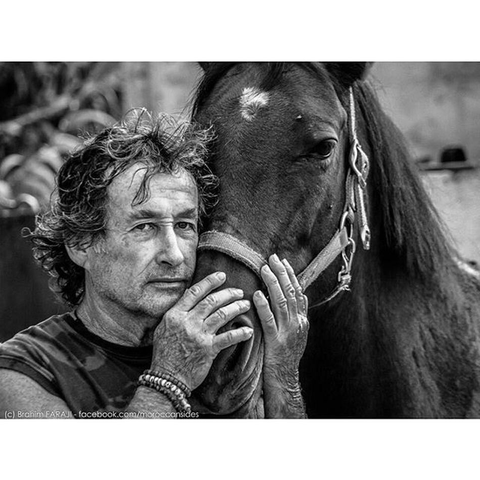 SPIRIT ! Man Horse Soul Spirit Beauty Nature Relationship Connection Berkane Oujda Maroc Morocco Nikon Picoftheday Igmorocco Ig_morocco Inmorocco Nowmorocco Vscom Knight  Chevalier équitation Farm Ferme