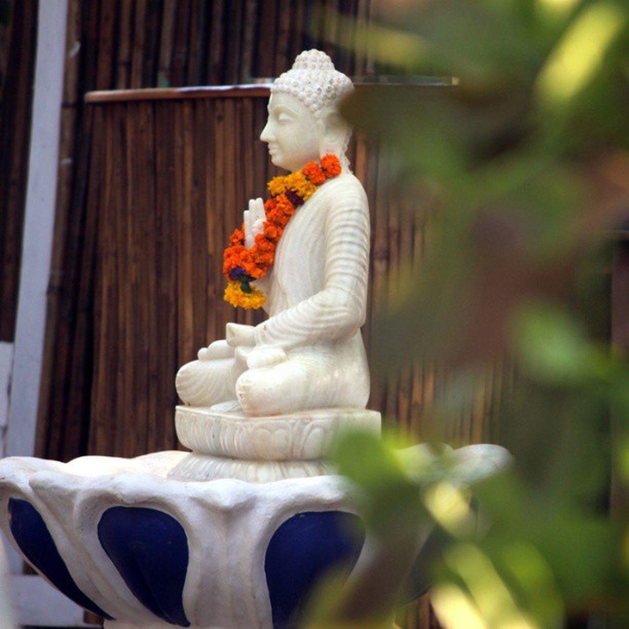 Calm Buddha Statue Art Ashvem Goa @goa
