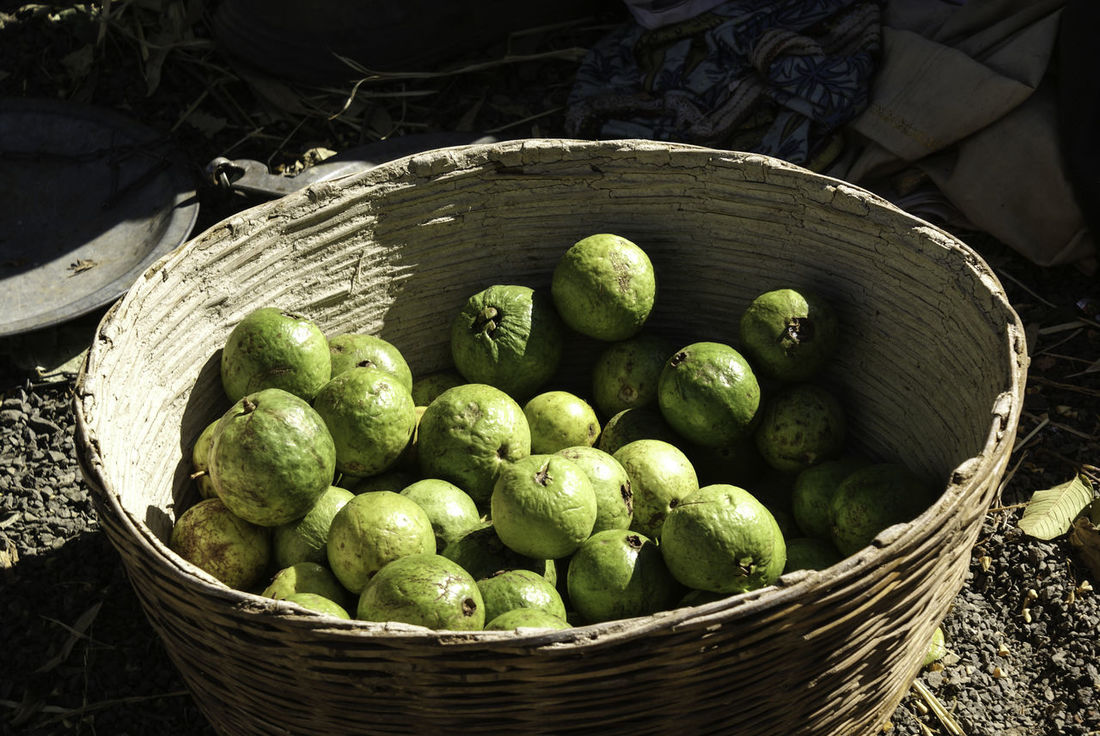 A basket full of green and delicious looking guavas at a train intersection just outside the Indian city of Bhopal. We were not able to get these, but looked very appetizing and very fresh. The guava is a hard fruit, with a flesh that is not juicy and can sometimes take some effort to bite into, especially when it is not ripe. When ripe, it gets easier to bite into. Basket Basket Of Fruit Basket Of Guavas Food Freshness Fruit Guava  Guava Fruit Guavas Healthy Eating No People Outdoors