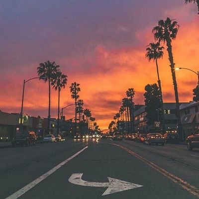 Sky And Clouds Sunset Night Fall Palm Trees Cars Rood City Photography Enjoying Life Check This Out
