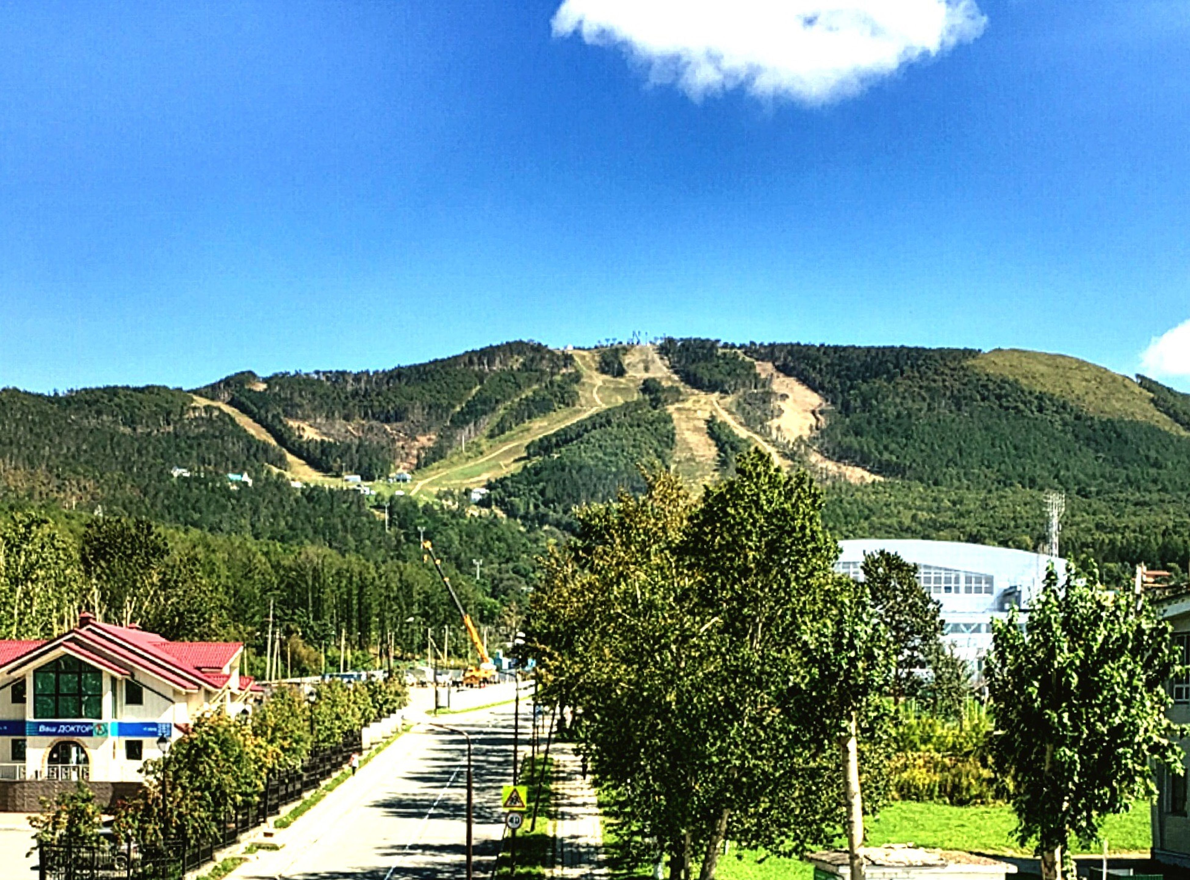 mountain, architecture, tree, building exterior, built structure, house, clear sky, blue, travel destinations, growth, mountain range, tranquility, tranquil scene, scenics, day, nature, tourism, outdoors, non-urban scene, beauty in nature, majestic, town, green color, lush foliage, physical geography, no people