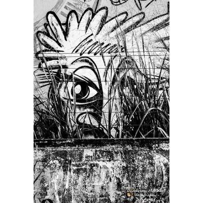 Marginália Demerson Mendes © Fotografia Fotografia BZ_Cotidiano Time_capitured Brazilingram Photo Detalhes Demersonmendes