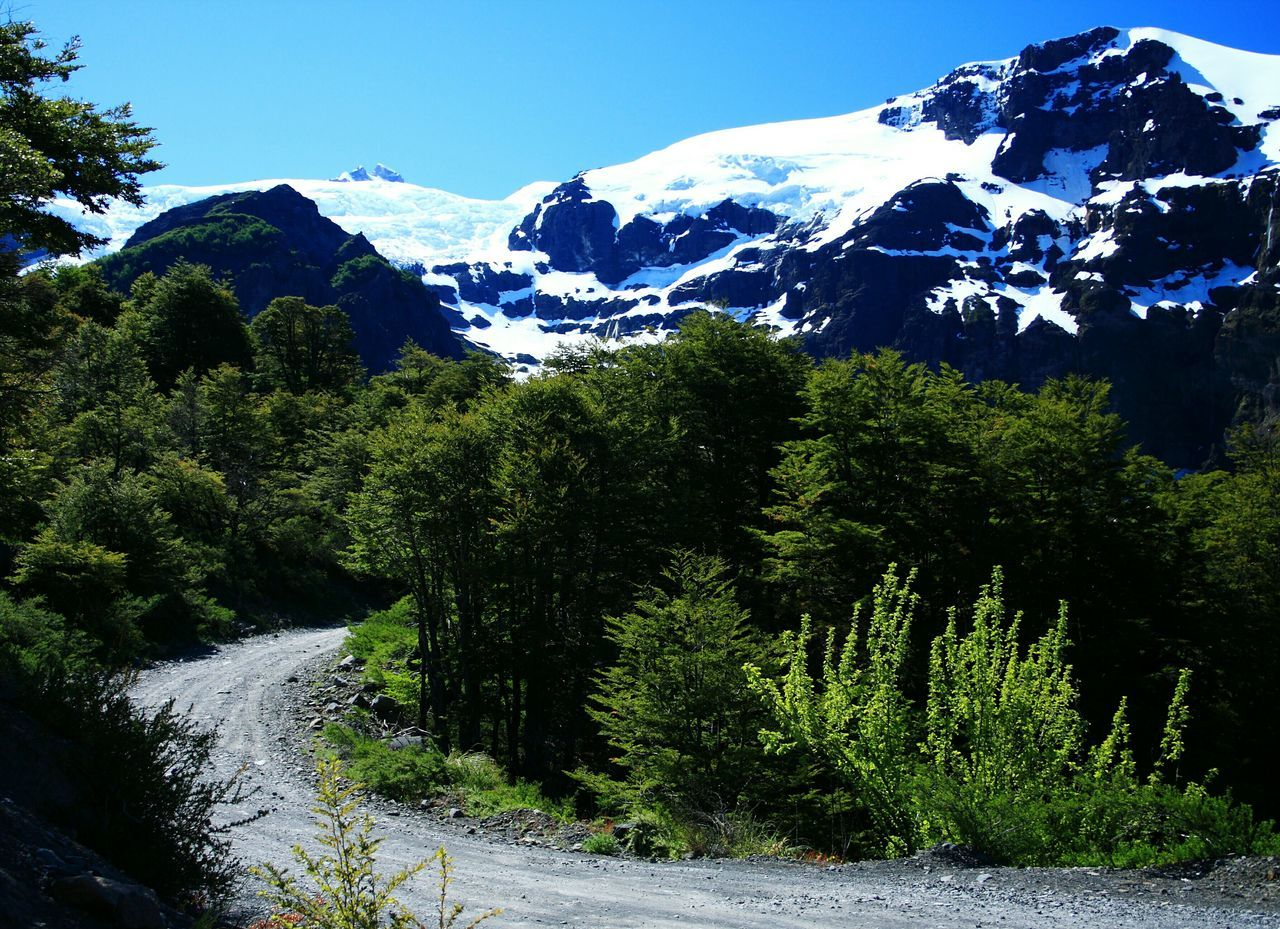 Road to Tronador. Bariloche, Patagonia Argentina. Unykaphoto Bariloche Patagonia Argentina Rio Negro Edge Of The World Argentina Border Cerro Tronador Glacier