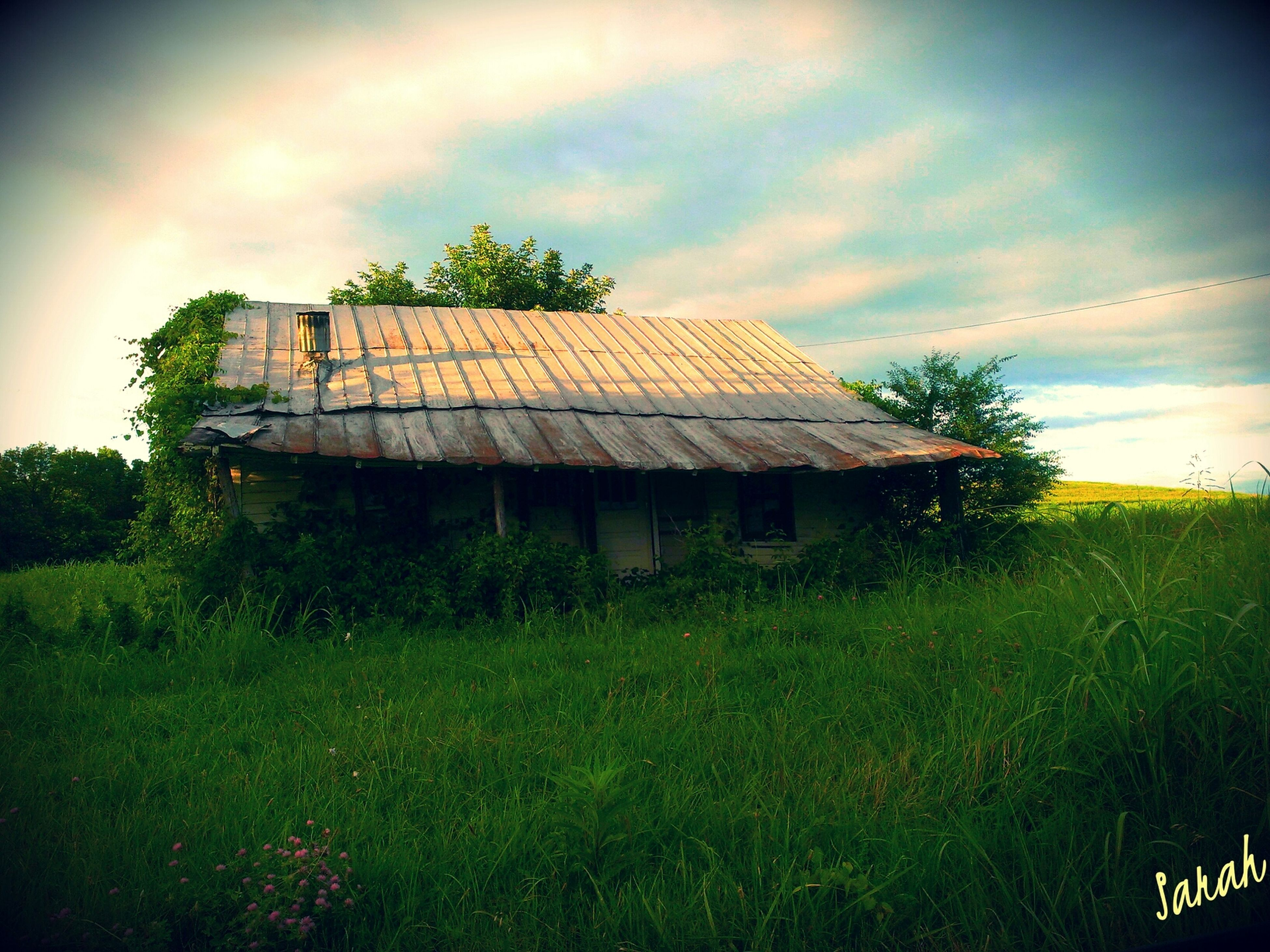 grass, built structure, architecture, building exterior, sky, field, house, cloud - sky, tree, grassy, barn, rural scene, growth, green color, nature, plant, cloud, cloudy, old, landscape