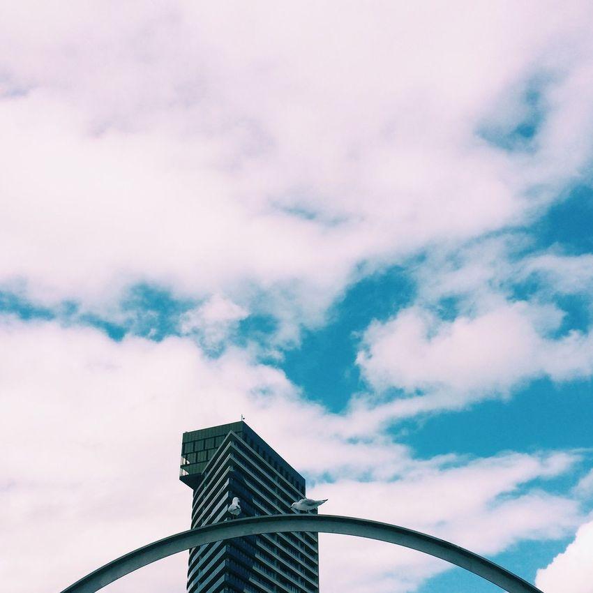 Sky Urban Landscape Architecture