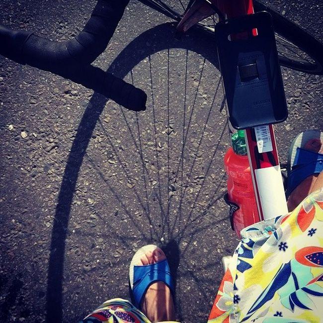 一整個休閒風。 20140620 早十 單車 藍白拖 海灘褲 giant