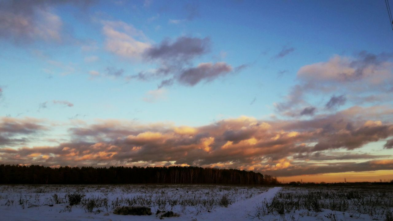 Snow Sunset Winter Sky Beauty In Nature Outdoors No People Nature Landscape Tree Cloud - Sky Scenics Cold Temperature Day Getting Inspired EyeEm Best Shots Always Be Cozy Backgrounds Beauty In Nature My Year My View Multi Colored