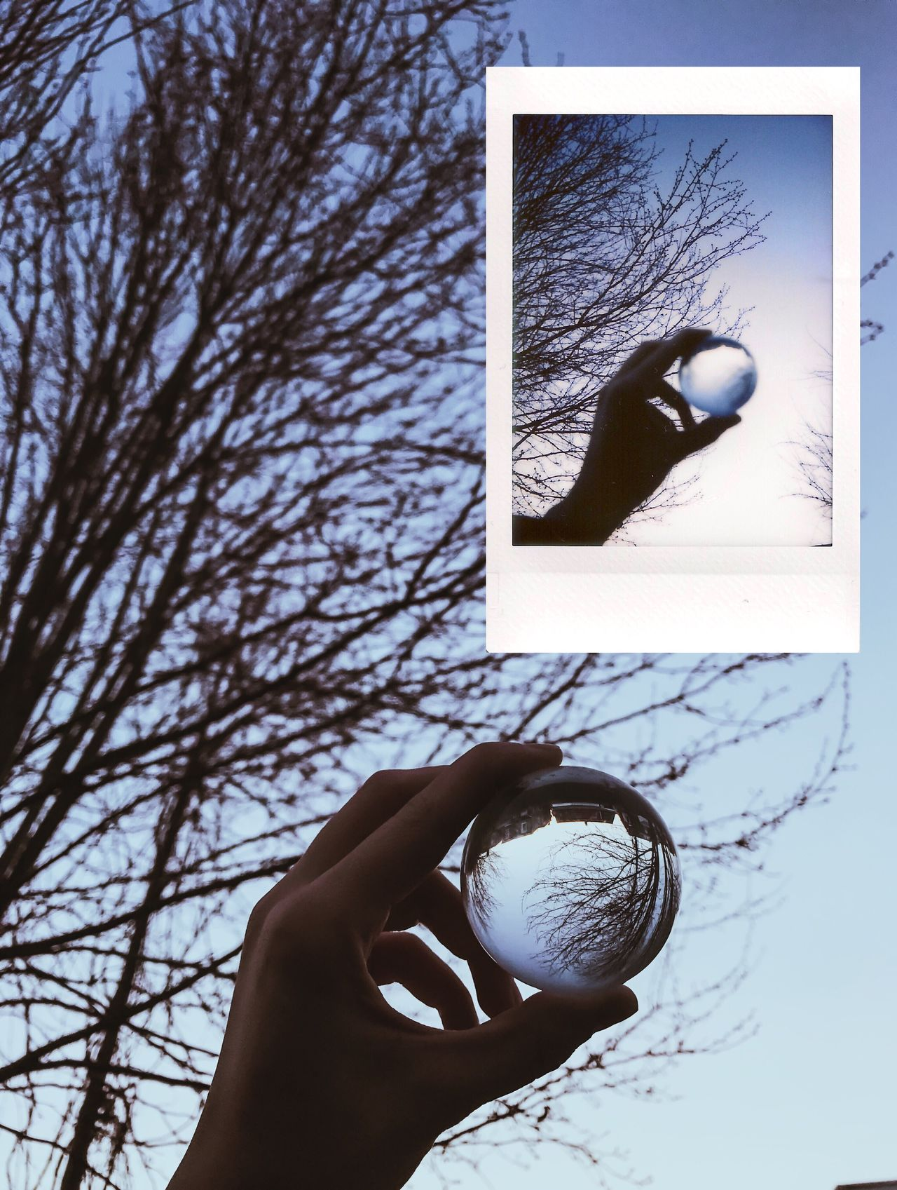 Instant Photo A Day Human Hand Holding Human Body Part One Person Real People Day Outdoors Tree Close-up Sky People Sunset Film Photography Film Is Not Dead Blue Simplicity