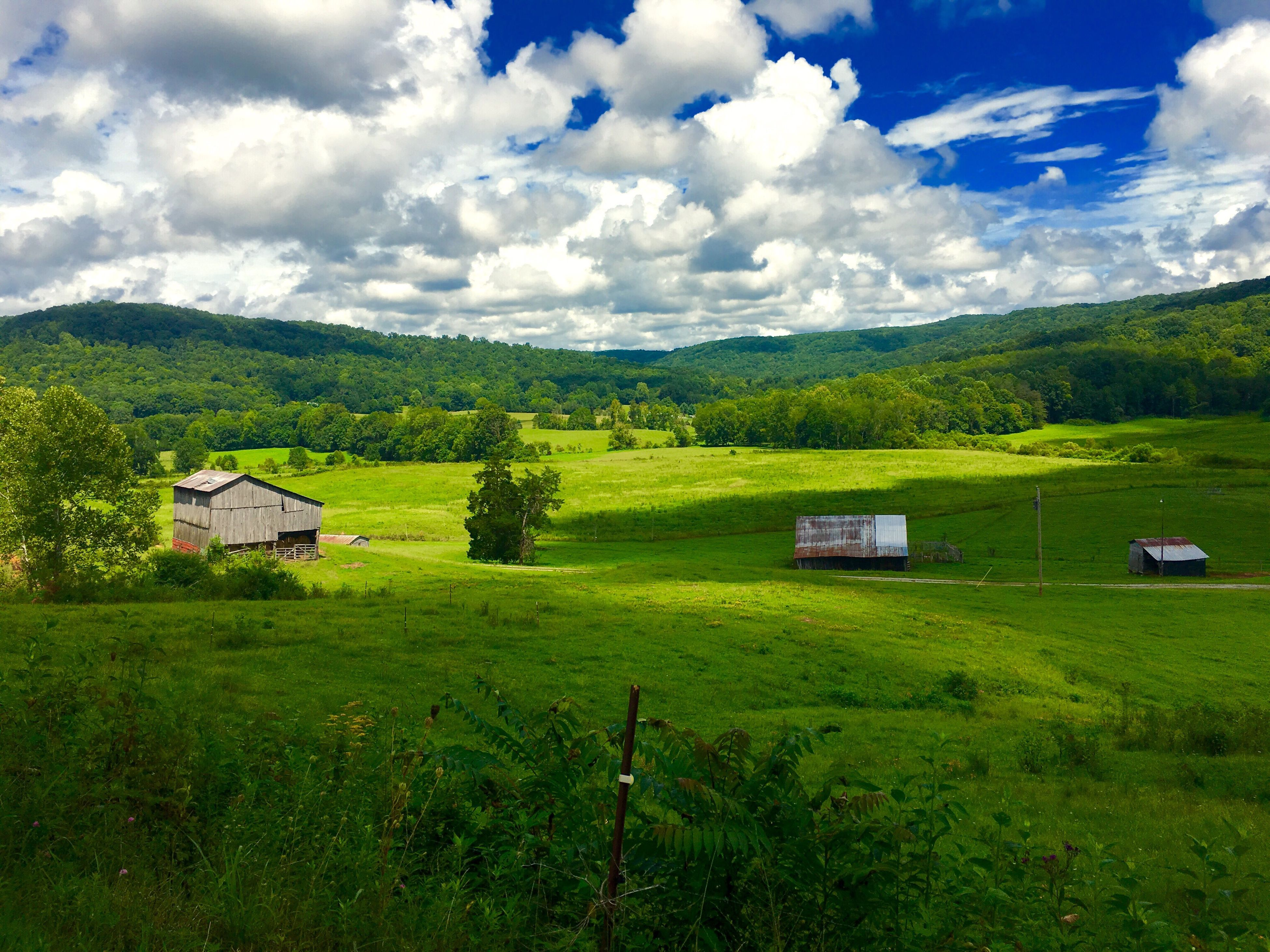 landscape, grass, tranquil scene, house, sky, tranquility, built structure, countryside, green color, cloud - sky, architecture, field, solitude, building exterior, scenics, rural scene, nature, plant, green, non-urban scene, beauty in nature, cloud, agriculture, growth, horizon over land, day, remote, outdoors, cloudy, no people, grass area, farm, country house, distant