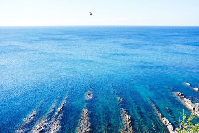 Rocks stripes Horizon Over Water Sea Tranquil Scene Scenics Tranquility Blue Nature Remote Water Beauty In Nature Day Outdoors Non-urban Scene Distant Open Edit TakeoverContrast Eye4photography  Sky Nature Tranquility EyeEm Best Shots Fresh 3 Landscape_Collection Landscape_photography Seascape
