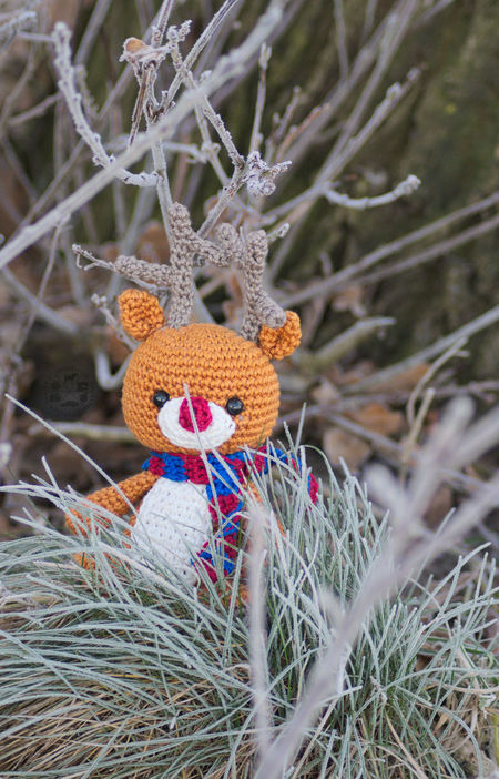 Rudolf doesn't want the winter end 😉 Insta Nature Natur Häkeln Beauty In Nature Growth No People Outdoors Winter Frost Frosty Reindeer Rentier Rudolf