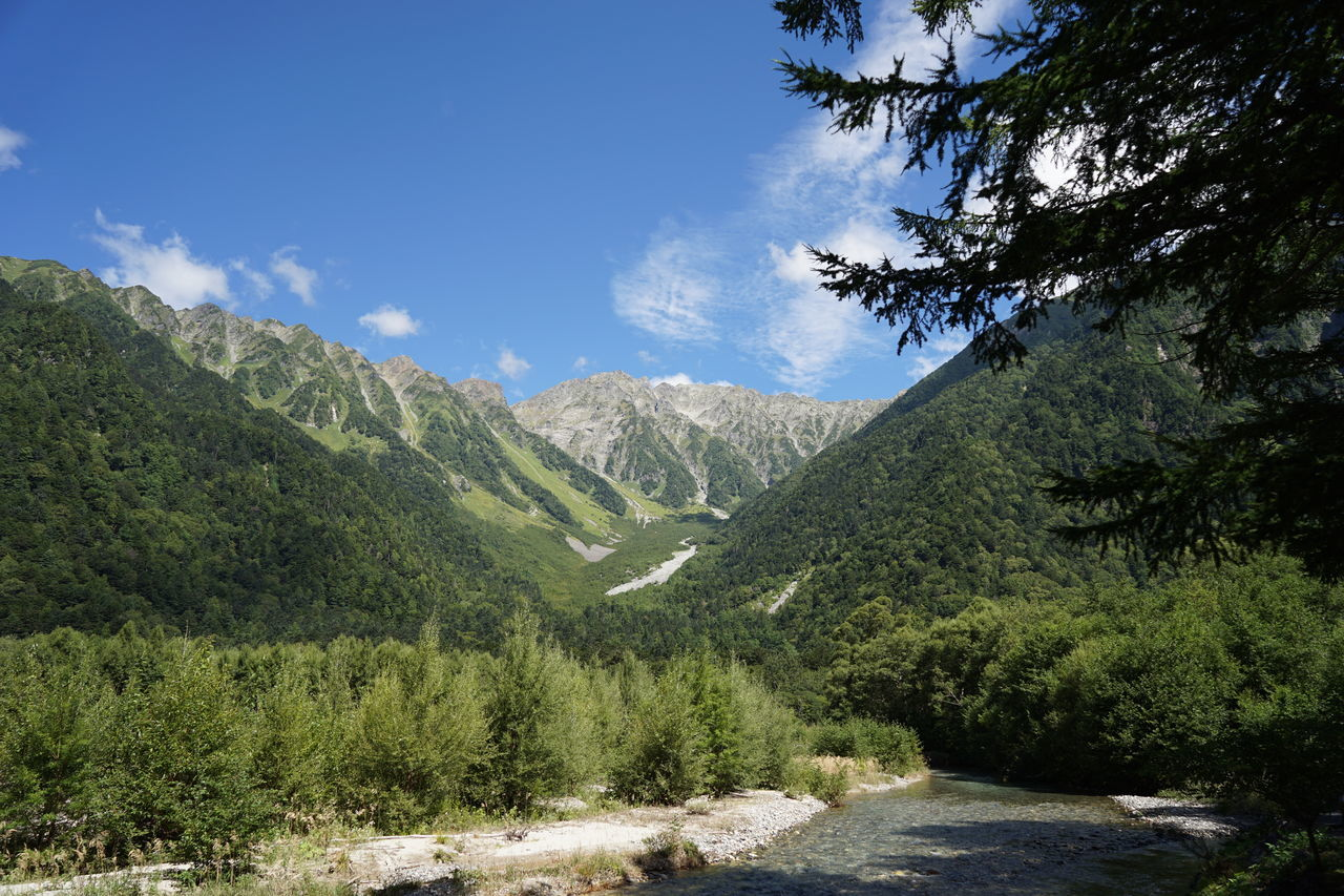 Adventure Azusa River Beauty In Nature Blue Day Forest Geology Hiking Adventures International Landmark Japanese Alps Kamikochi Landscape Mountain Nature No People Outdoors Pinaceae Sky Summer Travel Destinations Tree Wild Nature 上高地 梓川 穂高連峰