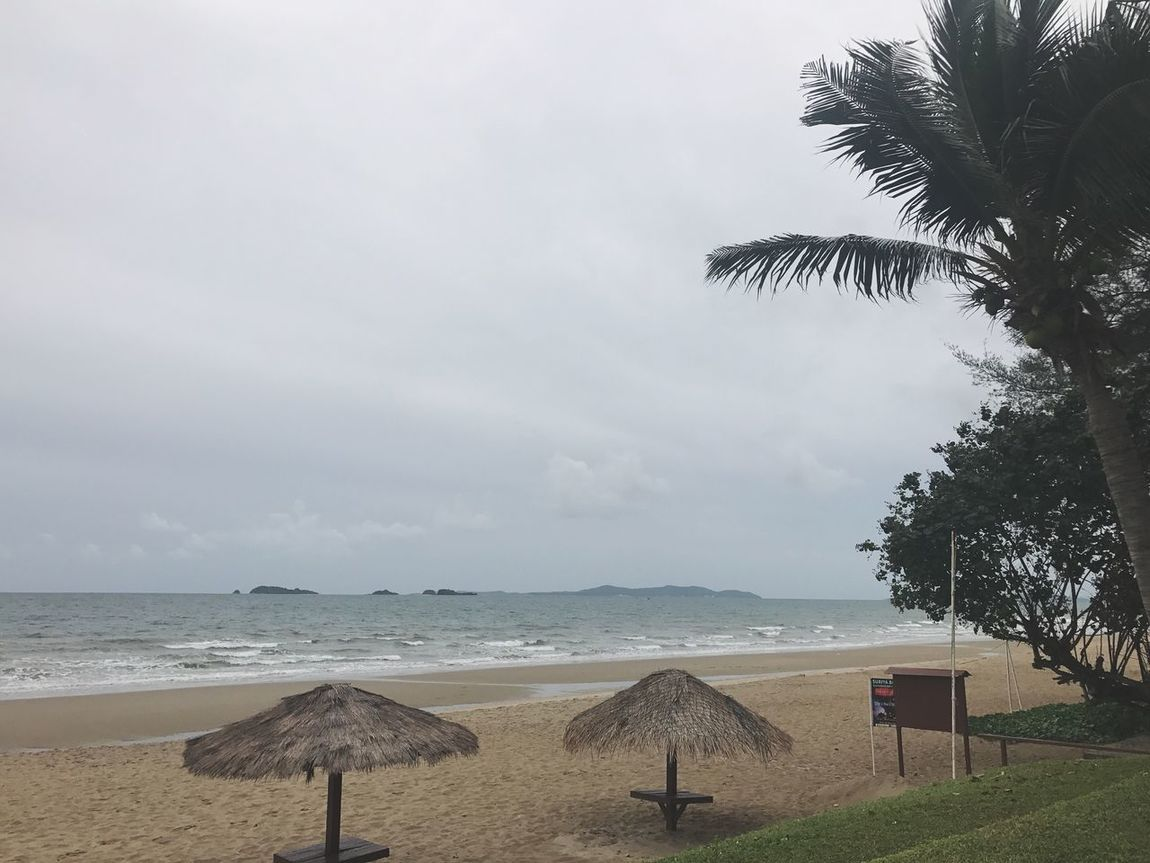ริมทะเล Seabeach EyeEm Here EyeEmSelect Rayong,Thailand Beach Sea Water Horizon Over Water Shore Sand Beauty In Nature Tranquility Nature Sky Palm Tree Scenics Tree Vacations Thatched Roof Day Tranquil Scene Outdoors Summer No People