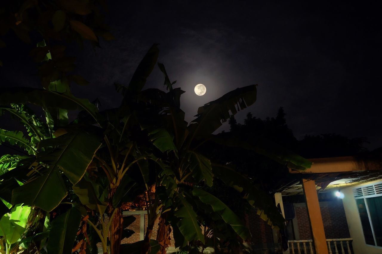 Low Angle View Of Full Moon Over House