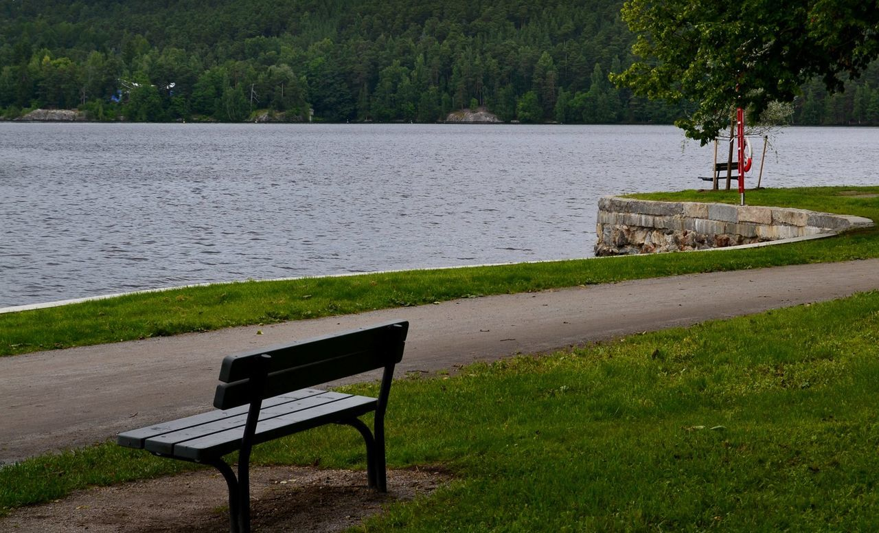 Beauty In Nature Bench Lakeside Road Lonelyroad Nopeople Outdoors Relaxation Simplelife Time For Quiet Reflection Tree Lakeside Path Path Silent Moment Peaceful Trees And Nature Bench Green Green Nature Green Lines View Nature_collection Colors Of Summer Nature Summer