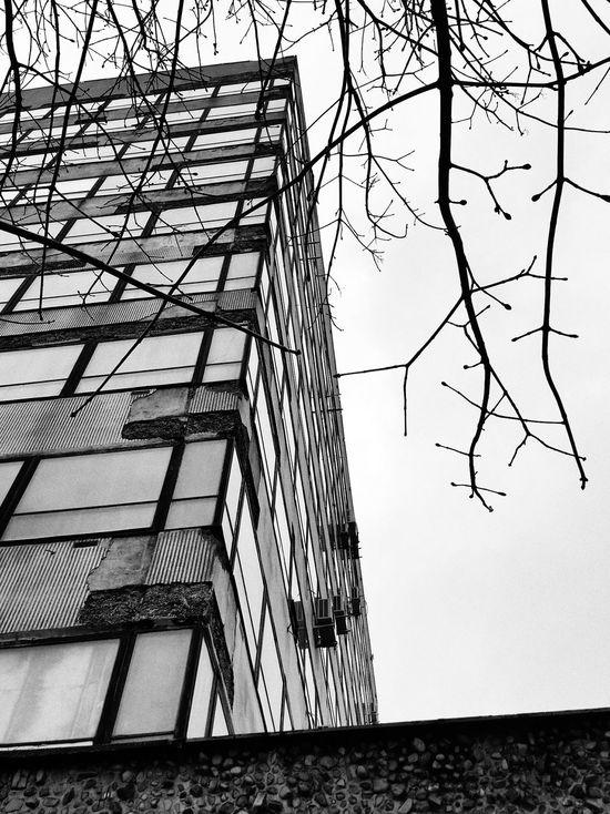 Tychy Igerstychy Igerspoland Monochrome Blackandwhite Photography Czarno-białe Mobileartistry