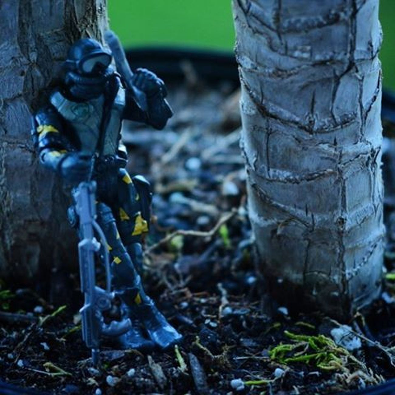 Killin time..and enemies. Toyonlocation Gills Thecorpseelite Rando Toys Cheaptoys Military Miniature Toypictures Toyart Plants Actionfigure Clean_captures Collectable Figurine  Toystagram Toystory Camo Toy Toyaddict